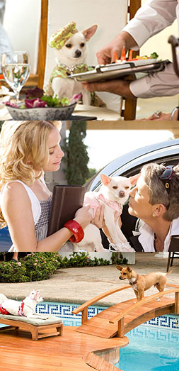 BEVERLY HILLS CHIHUAHUA movie audio clips, MP3 radio sound